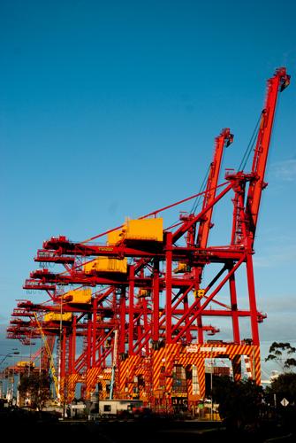 Cranes at Rest