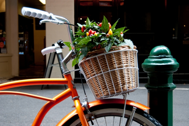 Cycling in Orange 1