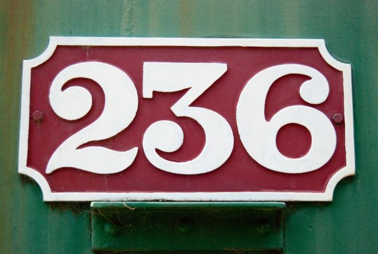 DSC_2353